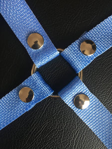 Sugar Baby Blue - Strap-on Harness