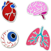 Load image into Gallery viewer, prendedores de corazon, cerebro, ojo y pulmones