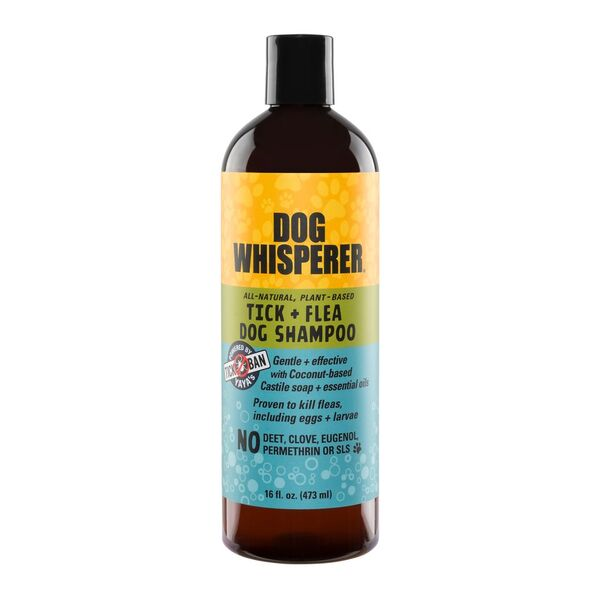 Dog Whisperer Tick & Flea - Dog Shampoo 16 oz.