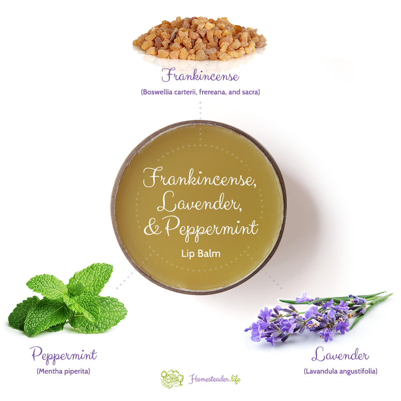 Frankincense, Lavender, and Peppermint Lip Balm