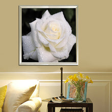 Load image into Gallery viewer, White Rose Round Drill Diamond Painting 25X25CM(Canvas)