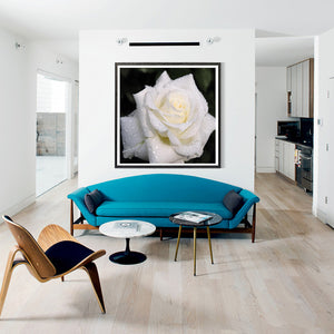 White Rose Round Drill Diamond Painting 25X25CM(Canvas)