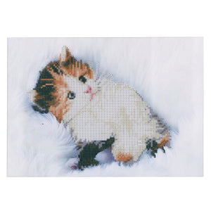 White Adorable Cat Round Drill Diamond Painting 40X30CM(Canvas)