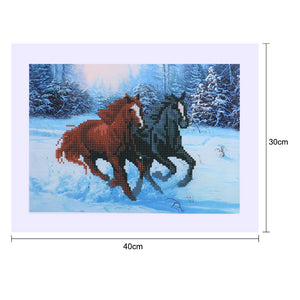 Two Horse Round Drill Diamond Painting 40X30CM(Canvas)