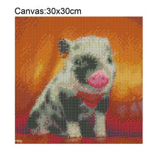 Load image into Gallery viewer, Pig Square Full Drill Diamond Painting 30X30CM(Canvas)