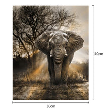 Load image into Gallery viewer, Elephant Round Part Drill Diamond Painting 40X30CM(Canvas)