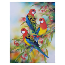 Load image into Gallery viewer, Bird Round Part Drill Diamond Painting 30X38CM(Canvas)