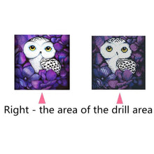 Load image into Gallery viewer, Bird Animal Round Full Drill Diamond Painting 25X25CM(Canvas)