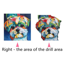 Load image into Gallery viewer, Lovely Colorful Dog Round Part Drill Diamond Painting 30X30CM(Canvas)