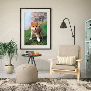 Curious Dog Round Full Drill Diamond Painting 40X30CM(Canvas)