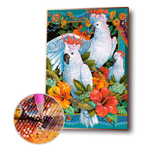Load image into Gallery viewer, Three Parrot Bead Round Full Drill Diamond Painting 30X40CM(Canvas)