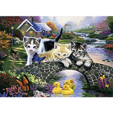 Load image into Gallery viewer, Cat On The Bridge 40X30CM(Canvas) Full Round Drill Diamond Painting