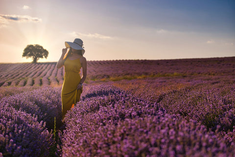 Woman in a field of lavender