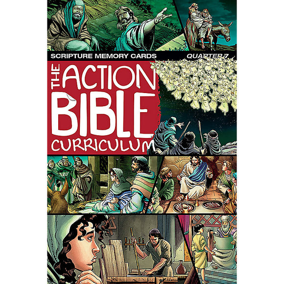 NIV The Action Bible Scripture Memory Cards