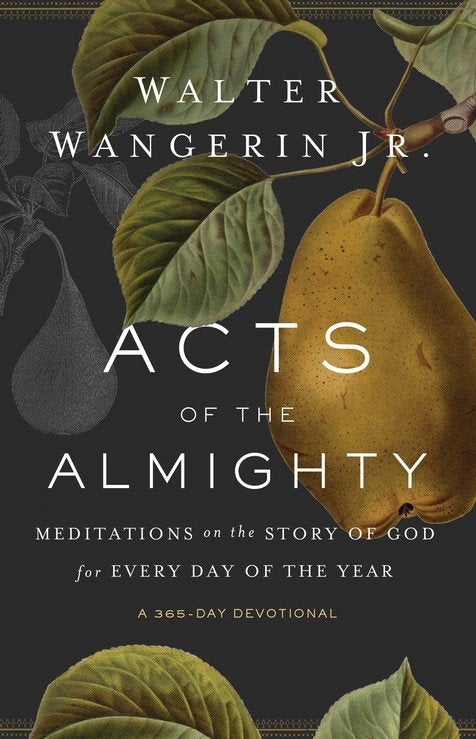 Acts of the Almighty: Meditations on the Story of God for Every Day of the Year Paperback – Walter Wangerin Jr.