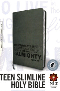 NLT Teen Slimline Bible--soft leather-look, charcoal with Psalm 91 design (indexed)