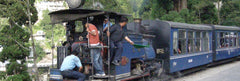 Darjeeling Tea Estate Toy Train