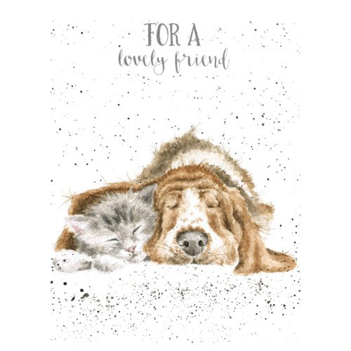 Friendship Card, Dog And Catnap