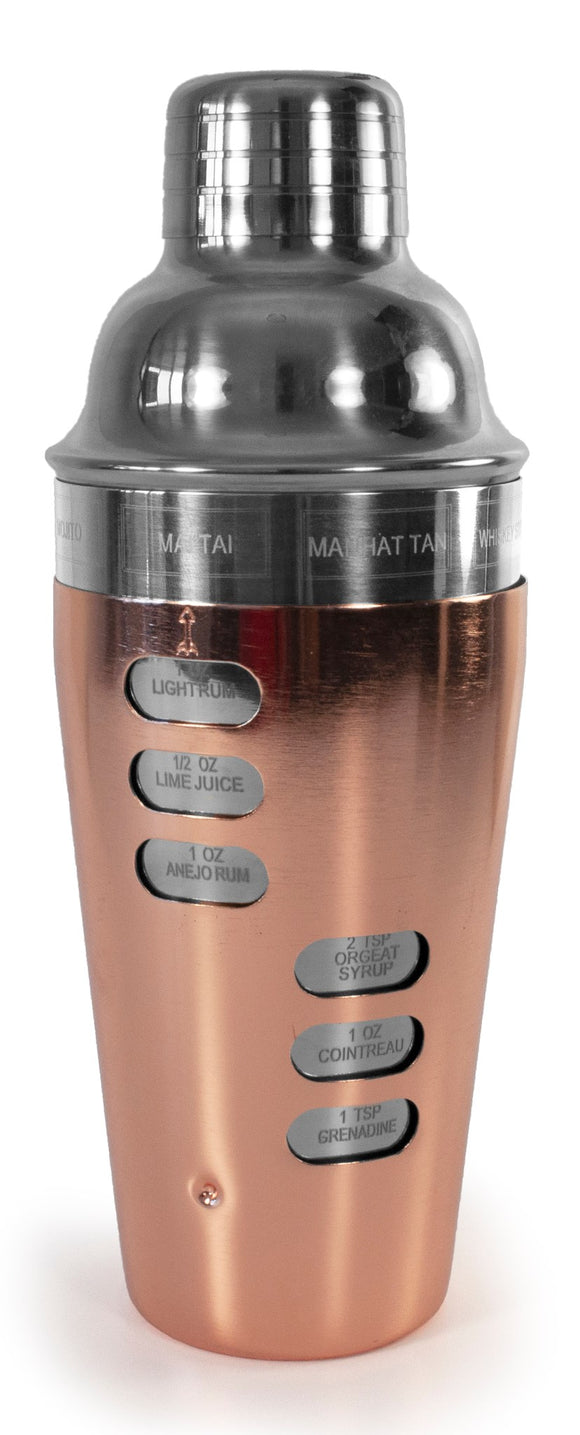 S/S & Copper Plated Cocktail Shaker w/Recipes