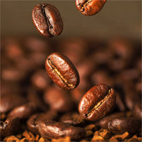 Coffee 101: Robusta Coffee