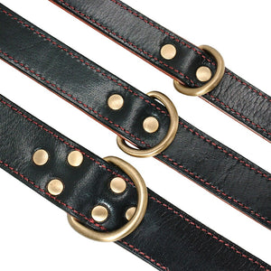 8 Dog Collar Perro Genuine Leather Pet Padded Dog Collar Ajustable For Medium Large Dogs French Bulldog German Shepherd M L XL