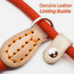 8.2 1P Chain Dog Leash Slip Collar pet Walking Leads Nylon Dog Mountain Climbing Rope puppy pet Traction For small Medium Large Dogs