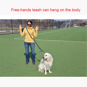 8 Multifunction 100% Genuine Leather Pet Dog Leash Luxury Strong Hands Free Leash Lead For Small Large Animals 250x1.1cm