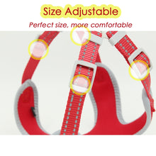 Load image into Gallery viewer, 8.2 1Breathable Dog Harness for Summer With Leash No Pull Harnesses for Small/Medium Dogs Puppies Reflective at Night Pet Products