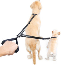 Load image into Gallery viewer, 8 Double Head Pet Leash Heavy Duty Nylon Dog Lead with Padded Handle Two Traction Rope for Two Dogs Outside Walking Training