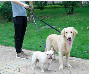 8 Double Head Pet Leash Heavy Duty Nylon Dog Lead with Padded Handle Two Traction Rope for Two Dogs Outside Walking Training