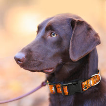 将图片加载到图库查看器,91 Adjustable Halloween Dog Collar Male Female Pet Puppy Collar Small Medium Large