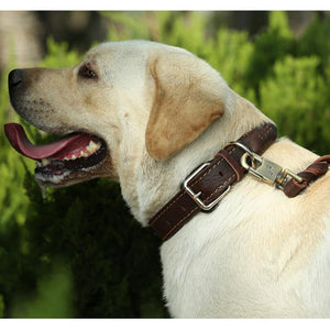 8 Leather Dog Collars Big Dogs Braided Handmade Basic Collars Strong Durable Pets Accessories for Golden Retriever Husky Animals