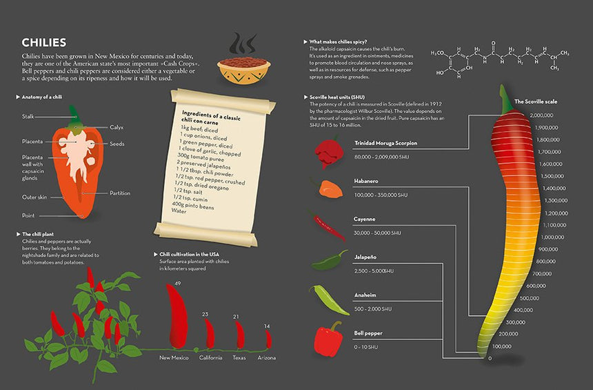Food and Drink Infographics: A Visual Guide to Culinary Pleasures