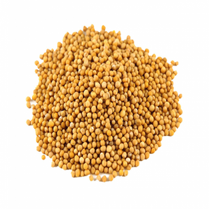 Mustard Seeds - Yellow, Whole