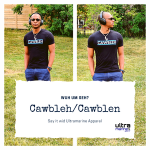 """Cawbleh"" Unisex T-Shirt (Blue Stripes)"