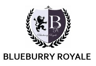 Blueburry Royale Custom Clothes