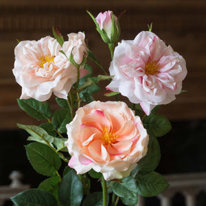 Faux Pink Garden Roses Stem, 3 assorted styles