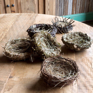 Bird Nest Collection Set of 6