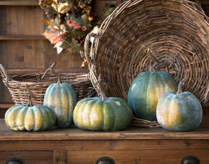 Early Green Heirloom Pumpkin Collection