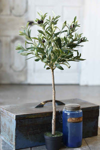 "Faux 32"" Potted Olive Tree Bush"