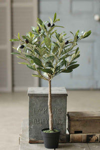 "Faux 26"" Potted Olive Tree"