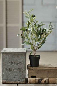 "Faux 19"" Potted Olive Tree Bush"