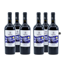 Load image into Gallery viewer, Wincent Primitivo IGP Matronae - Case of 6 bottles