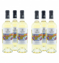 Load image into Gallery viewer, SuRealism Chardonnay IGP Matronae - Case of 6 bottles