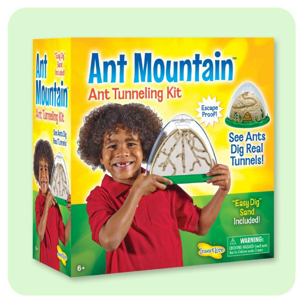 Ant Mountain