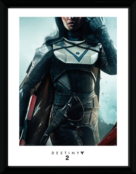 Destiny 2 Hunter Framed Print