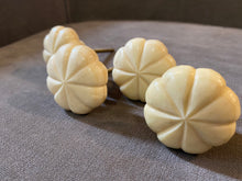 Load image into Gallery viewer, Handcrafted and Hand Painted Camel bone Door Knobs