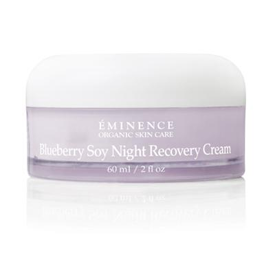 Blueberry Soy Night Recovery Cream - Spa Expert