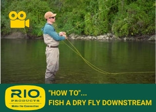 FISH A DRY FLY DOWNSTREAM