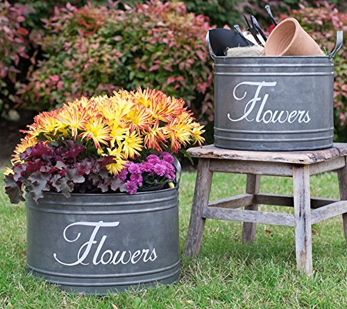 Vintage Style Galvanized Steel Flower Bin with French Country Print - Set of 2 Sizes